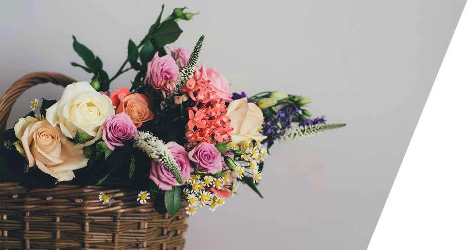 fotografia reklamowa kwiaty